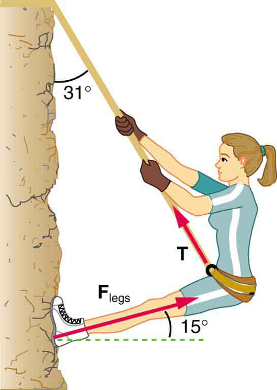 A mountain climber with a mass of fifty two kilograms exerts force with her feet parallel to her legs on a vertical rock face to remain stationary. The angle between her legs and the rock face is fifteen degrees, whereas the angle between the rope and the cliff is thirty one degrees.
