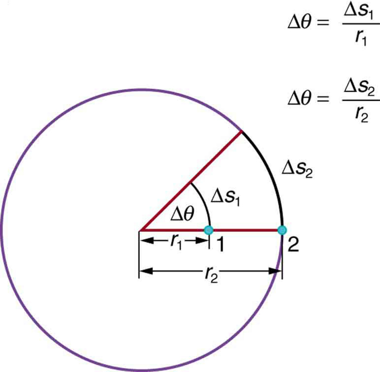 A circle is shown. Two radii of the circle, inclined at an acute angle delta theta, are shown. On one of the radii, two points, one and two are marked. The point one is inside the circle through which an arc between the two radii is shown. The point two is on the cirumfenrence of the circle. The two arc lengths are delta s one and delta s two respectively for the two points.