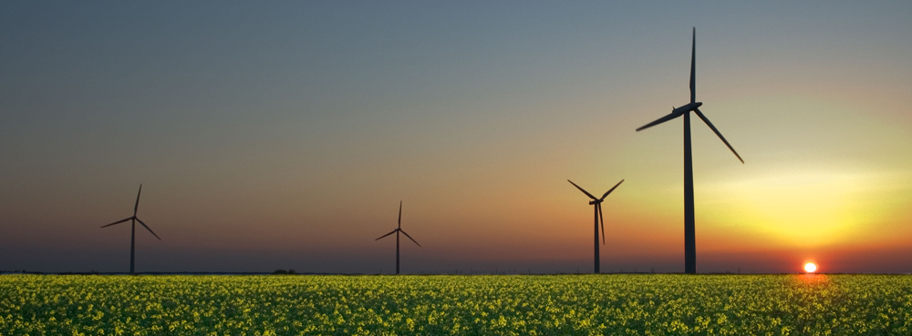 A field with four wind turbines and the Sun setting in the background.