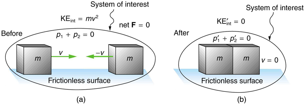 The system of interest contains two equal masses with mass m. One moves to the right and the other moves to the left with the same magnitude of velocity represented by V. Due to this their total momentum and net force remains zero. The internal kinetic energy is mv power 2. After collision the system of interest has no net velocity, no total momentum and no internal kinetic energy. This is true for all inelastic collisions.