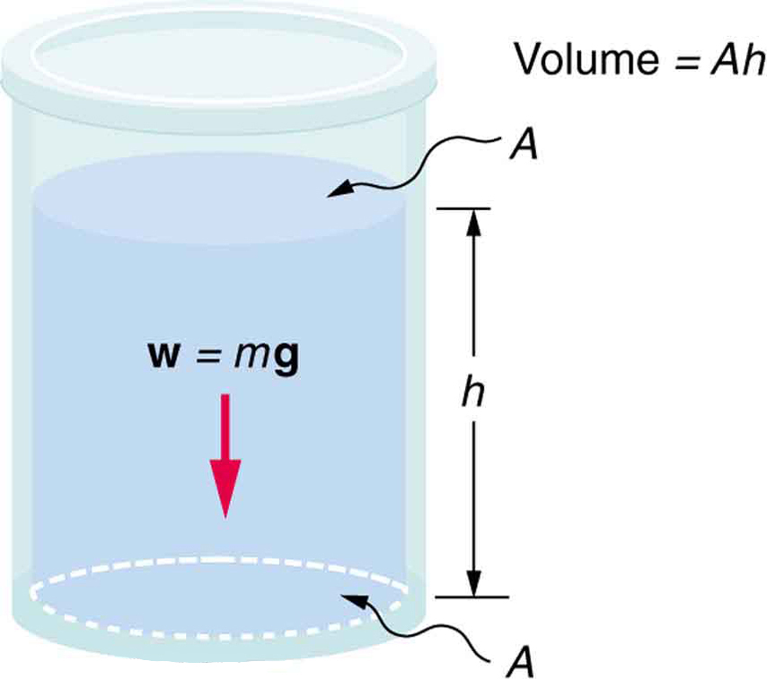 A container with fluid filled to a depth h. The fluid's weight w equal to m times g is shown by an arrow pointing downward. A denotes the area of the fluid at the bottom of the container and as well as on the surface.