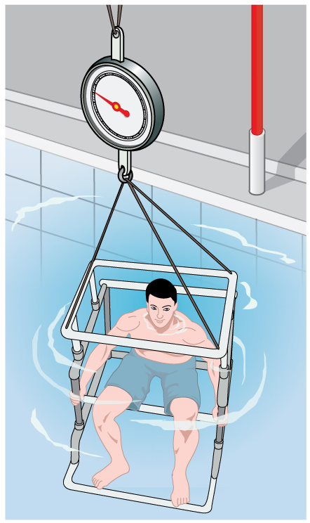 The weight of a person can be determined while submerged in a fat tank. Based on this, the percentage of body weight can be calculated.
