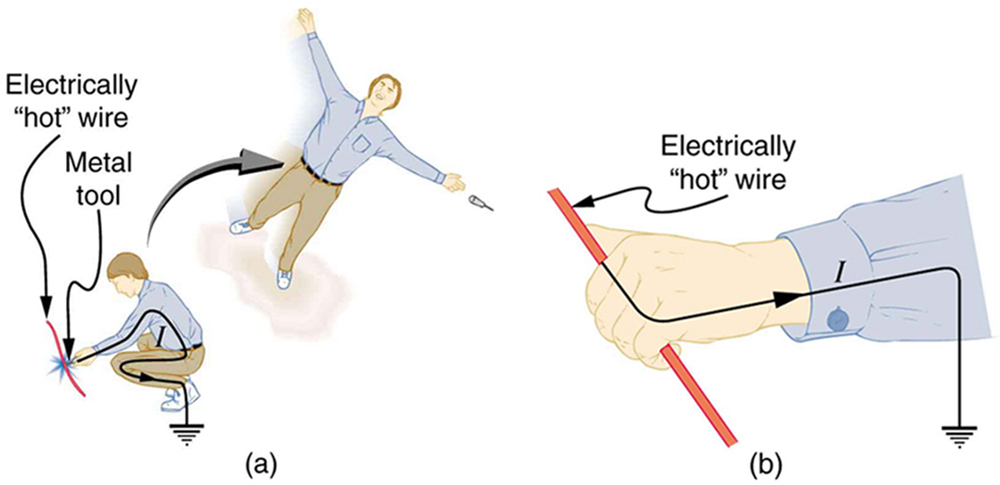 Part a of the diagram shows a person working on an electrically hot wire with a metal tool. The next step shows that he is a victim of electric shock and is thrown backward with his arms and legs stretched. The metal tool also falls off his hand. Part b of the diagram shows a person holding the electrically hot wire with his hands. The person is not thrown away. He cannot let go of the wire because the muscles that close the fingers are stronger than those that open them.