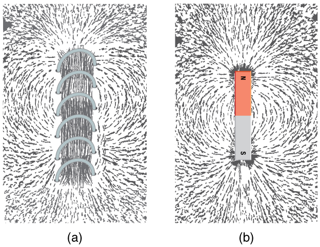The arrangement of iron filings as they are affected by a metal coil that is carrying an electric current and a bar magnet. At the poles of the magnet, the filings are aligned radially to the poles. Between the poles, the filings are roughly parallel to the magnet. Thus, from one pole to the other, the filings have an arcuate arrangement. The density of filings is very high at the poles and relatively low on either side of the center of the magnet. The arrangement is similar around the current-carrying coil.