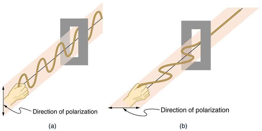 The figure shows waves on a vertically oscillating rope that pass through a vertical slit. A separate drawing shows waves on a horizontally oscillating rope that do not pass through a similar slit.