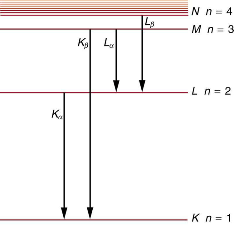 Different energy levels are shown in the form of horizontal lines. The line at the bottom shows the energy level for n is equal to one for the K shell. At a distance above this line, another horizontal line shows the energy level for n is equal to two for the shell L. Similarly, other lines are shown for the shells M and N. As we move from bottom to the top, the distance between the lines decreases, and near the end a few lines are shown very close to each other. Each level is labeled according to the characteristic x ray of the shell.