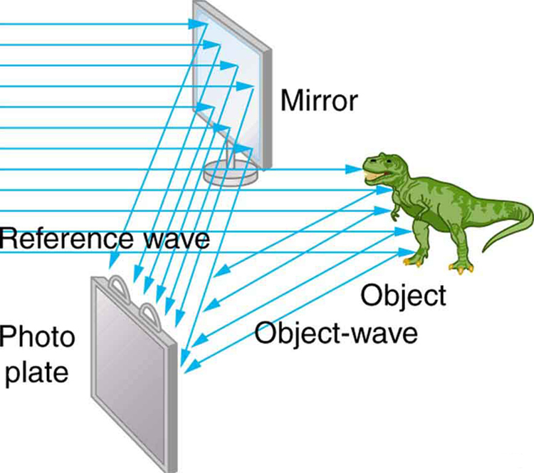 The schematic representation shows that coherent light from a laser is incident on an object which is a dinosaur and also on a tilted mirror, which reflects the light at an angle. Then, the reflected light from the mirror and the reflected object wave fall on a photo plate simultaneously.