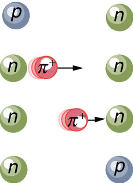 The image shows the creation a pion from a proton and its exchange to a neutron. After the exchange, the proton has become a neutron and the neutron has become a proton.