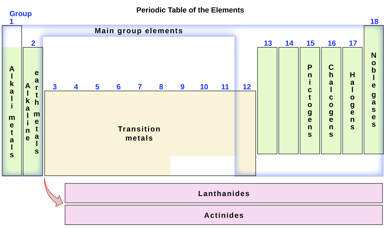 This diagram combines the groups and periods of the periodic table based on their similar properties. Group 1 contains the alkali metals, group 2 contains the earth alkaline metals, group 15 contains the pnictogens, group 16 contains the chalcogens, group 17 contains the halogens and group 18 contains the noble gases. The main group elements consist of groups 1, 2, and 12 through 18. Therefore, most of the transition metals, which are contained in groups 3 through 11, are not main group elements. The lanthanides and actinides are called out at the bottom of the periodic table.