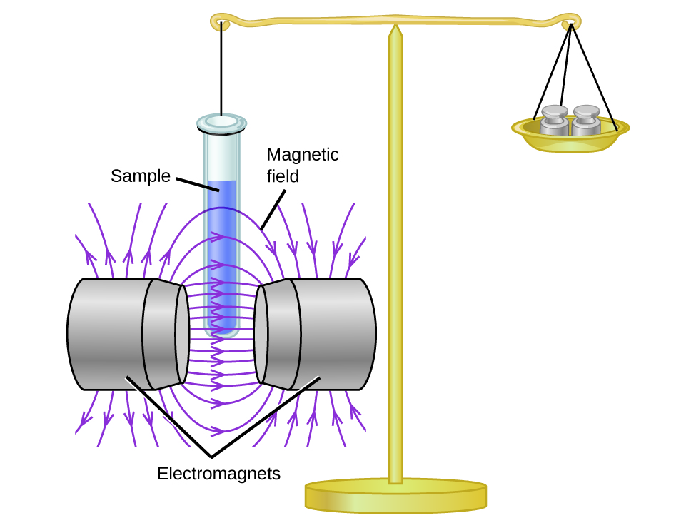 "A diagram depicts a stand supporting two objects that are held in balance by a horizontal bar. On the right, the bar supports a dish that is holding two weights. On the left there is a line attached to a test tube labeled, ""Sample tube."" The test tube has been lowered into the space labeled, ""Magnetic field,"" between two structures labeled, ""Electromagnets."""