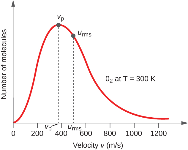 """A graph is shown. The horizontal axis is labeled, """"Velocity v ( m divided by s )."""" This axis is marked by increments of 20 beginning at 0 and extending up to 120. The vertical axis is labeled, """"Fraction of molecules."""" A positively or right-skewed curve is shown in red which begins at the origin and approaches the horizontal axis around 120 m per s. At the peak of the curve, a point is indicated with a black dot and is labeled, """"v subscript p."""" A vertical dashed line extends from this point to the horizontal axis at which point the intersection is labeled, """"v subscript p."""" Slightly to the right of the peak a second black dot is placed on the curve. This point is labeled, """"v subscript r m s."""" A vertical dashed line extends from this point to the horizontal axis at which point the intersection is labeled, """"v subscript r m s."""" The label, """"O subscript 2 at T equals 300 K"""" appears in the open space to the right of the curve."""