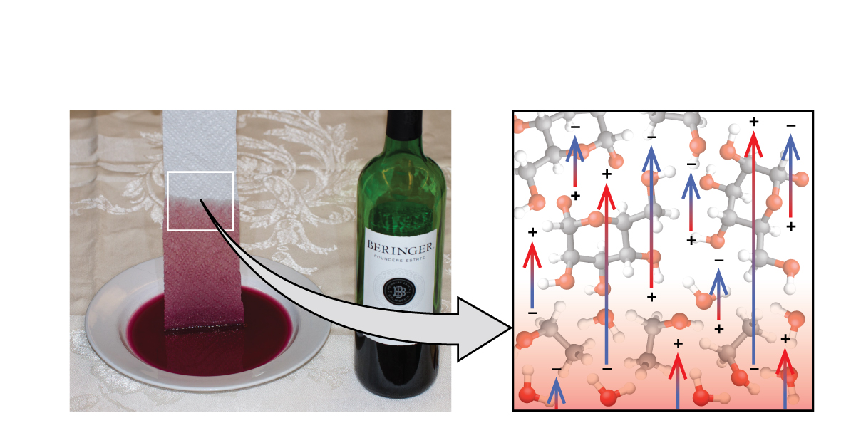 A photo and a diagram are shown. In the photo, a paper towel is dipped into a bowl full of a red liquid sitting on a countertop. The red liquid is traveling up the lower part of the paper towel, and this section of the photo has a square drawn around it. A right-facing arrow leads from this square to the image. The image is square and has a background of two types of molecules, mixed together. The first type of molecule is composed of two bonded black spheres, one of which is single bonded to three white spheres and one of which is single bonded to two white spheres and a red sphere that is itself bonded to a white sphere. The other type of molecule is composed of six black spheres bonded together in a row and bonded to other red and white spheres. Six upward-facing arrows are drawn on top of this background. They have positive signs on their lower ends and negative signs on their heads. Four upward-facing arrows are drawn with their signs reversed.