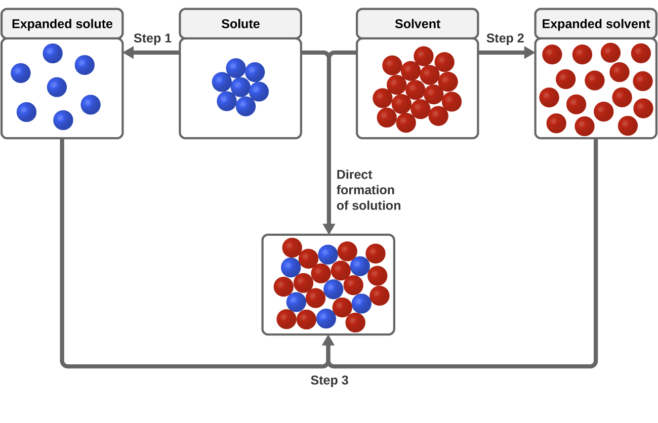 "The top, central region of the figure shows solute particles as seven blue spheres and solvent particles as 16 red spheres in separate, labeled boxes. The particles in these boxes are touching. An arrow labeled ""Step 1"" points left of the solute box, and shows the blue spheres no longer touching in another box labeled ""expanded solute."" An arrow labeled ""Step 2"" points right from the solvent box and shows the red spheres no longer touching in another box labeled ""expanded solvent."" Arrows proceed from the bottom of the expanded solute and expanded solvent boxes and join at the bottom of the figure where a step 3 label is shown. The joined arrows point to a box just above in which the red and blue spheres are mixed together and touching. The solute and solvent boxes are joined by another arrow labeled ""direct formation of solution"" which points downward at the center of the figure. This arrow also points to the box containing mixed red and blue spheres near the bottom of the figure."