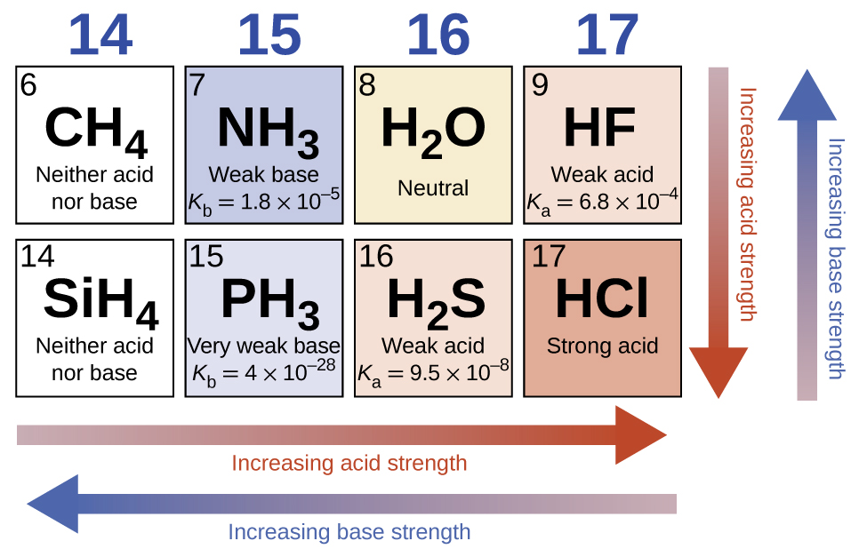 "This diagram has two rows and four columns. Red arrows point left across the bottom of the figure and down at the right side and are labeled ""Increasing acid strength."" Blue arrows point left across the bottom and up at the right side of the figure and are labeled ""Increasing base strength."" The first column is labeled 14 at the top and two white squares are beneath it. The first has the number 6 in the upper left corner and the formula C H subscript 4 in the center along with designation Neither acid nor base. The second square contains the number 14 in the upper left corner, the formula C H subscript 4 at the center and the designation Neither acid nor base. The second column is labeled 15 at the top and two blue squares are beneath it. The first has the number 7 in the upper left corner and the formula N H subscript 3 in the center along with the designation Weak base and K subscript b equals 1.8 times 10 superscript negative 5. The second square contains the number 15 in the upper left corner, the formula P H subscript 3 at the center and the designation Very weak base and K subscript b equals 4 times 10 superscript negative 28. The third column is labeled 16 at the top and two squares are beneath it. The first is shaded tan and has the number 8 in the upper left corner and the formula H subscript 2 O in the center along with the designation neutral. The second square is shaded pink, contains the number 16 in the upper left corner, the formula H subscript 2 S at the center and the designation Weak acid and K subscript a equals 9.5 times 10 superscript negative 8. The fourth column is labeled 17 at the top and two squares are beneath it. The first is shaded pink, has the number 9 in the upper left corner and the formula H F in the center along with the designation Weak acid and K subscript a equals 6.8 times 10 superscript negative 4. The second square is shaded a deeper pink, contains the number 17 in the upper left corner, the formula H C l at the center, and the designation Strong acid."