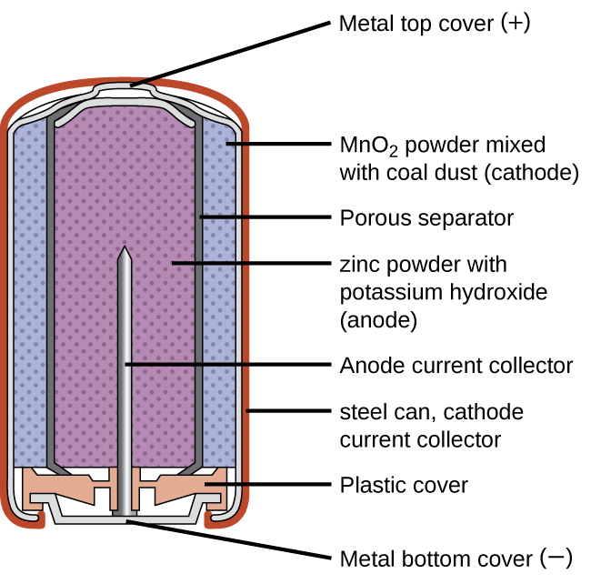 "A diagram of a cross section of an alkaline battery is shown. The overall shape of the cell is cylindrical. The lateral surface of the cylinder, indicated as a thin red line, is labeled ""Outer casing."" Just beneath this is a thin, light grey surface that covers the lateral surface and top of the battery. Inside is a blue region with many evenly spaced small darker dots, labeled ""M n O subscript 2 (cathode)."" A thin dark grey layer is just inside, which is labeled ""Ion conducting separator."" A purple region with many evenly spaced small darker dots fills the center of the battery and is labeled "" zinc (anode)."" The very top of the battery has a thin grey curved surface over the central purple region. The curved surface above is labeled ""Positive connection (plus)."" At the base of the battery, an orange structure, labeled ""Protective cap,"" is located beneath the purple and blue central regions. This structure holds a grey structure that looks like a nail with its head at the bottom and pointed end extending upward into the center of the battery. This nail-like structure is labeled ""Current pick up."" At the very bottom of the battery is a thin grey surface that is held by the protective cap. This surface is labeled ""Negative terminal (negative)."""