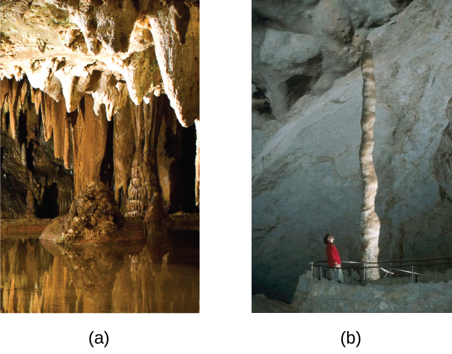 "Two photographs are shown and labeled, ""a"" and ""b."" Photo a shows stalactites clinging to the ceiling of a cave while photo b shows a stalagmite growing from the floor of a cave."