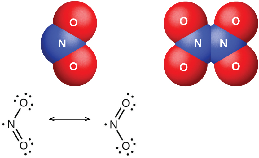 "Two space-filling models and two Lewis structures are shown. The left space-filling model shows a blue atom labeled, ""N,"" bonded to two red atoms labeled, ""O,"" while the right space-filling model shows two blue atoms labeled, ""N,"" each bonded to two red atoms labeled, ""O."" The left Lewis structure shows a nitrogen atom with one lone electron single bonded to an oxygen atom with three lone pairs of electrons. The nitrogen atom is also double bonded to an oxygen atom with two lone pairs of electrons. The right structure, which is connected by a double-headed arrow to the first, is a diagram showing a similar Lewis structure, but the position of the double bond and the number of electron pairs on the oxygen atoms have switched."