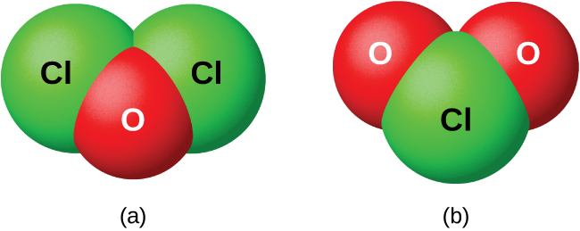 "Two space filling models are shown and labeled, ""a,"" and ""b."" Model a shows a red atom labeled, ""O,"" bonded to two green atoms labeled, ""C l,"" in a v-shape. Model b shows a green atom labeled, ""C l,"" bonded to two red atoms labeled, ""O,"" in a v-shape."