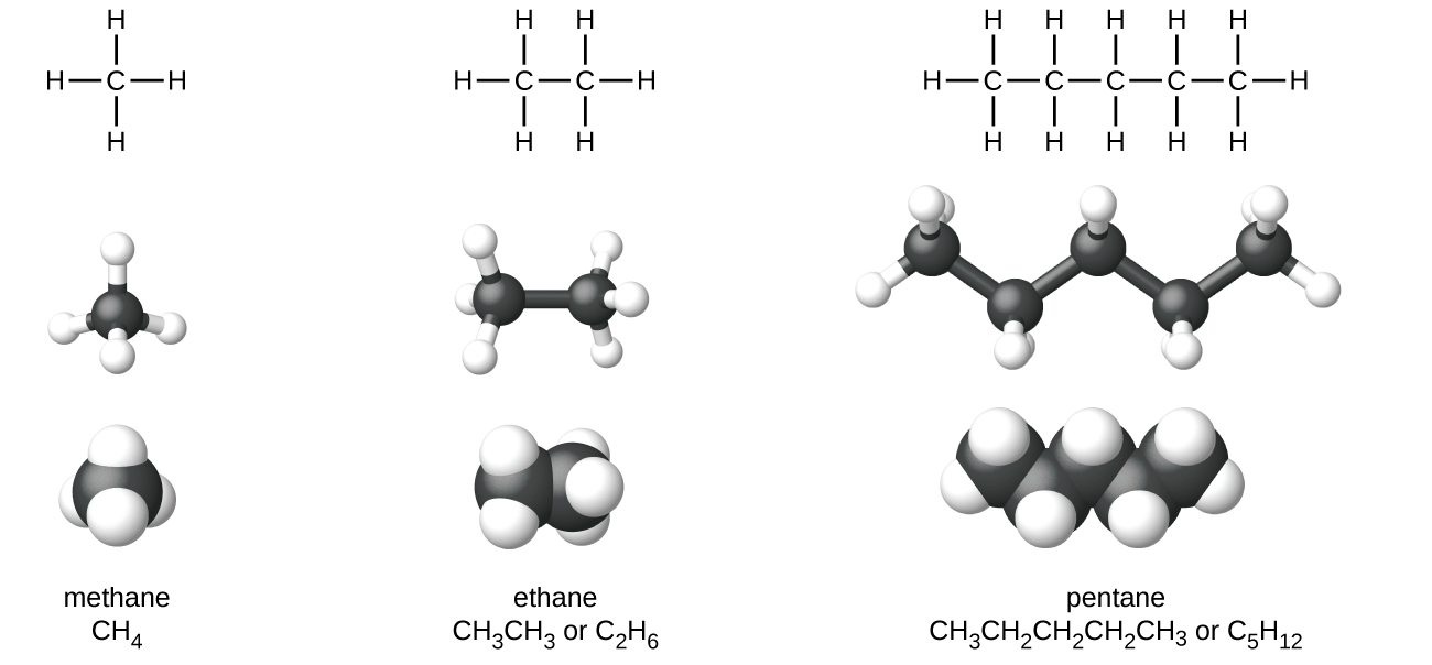 The figure illustrates four ways to represent molecules for molecules of methane, ethane, and pentane. In the first row of the figure, Lewis structural formulas show element symbols and bonds between atoms. Methane has a central C atom with four H atoms bonded to it. Ethane has a C atom with three H atoms bonded to it. The C atom is also bonded to another C atom with three H atoms bonded to it. Pentane has a C atom with three H atoms bonded to it. The C atom is bonded to another C atom with two H atoms bonded to it. The C atom is bonded to another C atom with two H atoms bonded to it. The C atom is bonded to another C atom with two H atoms bonded to it. The C atom is bonded to another C atom with three H atoms bonded to it. In the second row, ball-and-stick models are shown. In these representations, bonds are represented with sticks, and elements are represented with balls. Carbon atoms are black and hydrogen atoms are white in this image. In the third row, space-filling models are shown. In these models, atoms are enlarged and pushed together, without sticks to represent bonds. The molecule names and structural formulas are provided in the fourth row. Methane is named and represented with a condensed structural formula as C H subscript 4. Ethane is named and represented with two structural formulas C H subscript 3 C H subscript 3 and C subscript 2 H subscript 6. Pentane is named and represented as both C H subscript 3 C H subscript 2 C H subscript 2 C H subscript 2 C H subscript 3 and C subscript 5 H subscript 12.