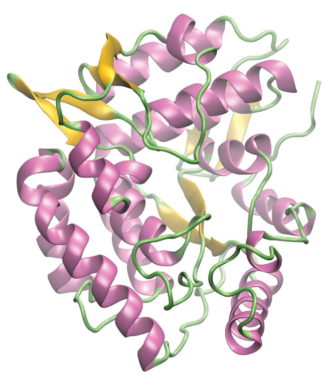This figure includes a computer generated image of an enzyme molecule showing string and curled ribbon-like structural components in purple, green, and yellow hues.