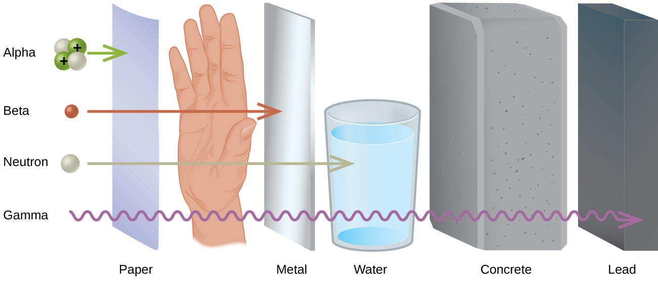 "A diagram shows four particles in a vertical column on the left, followed by an upright sheet of paper, a person's hand, an upright sheet of metal, a glass of water, a thick block of concrete and an upright, thick piece of lead. The top particle listed is made up of two white spheres and two green spheres that are labeled with positive signs and is labeled ""Alpha."" A right-facing arrow leads from this to the paper. The second particle is a red sphere labeled ""Beta"" and is followed by a right-facing arrow that passes through the paper and stops at the hand. The third particle is a white sphere labeled ""Neutron"" and is followed by a right-facing arrow that passes through the paper, hand and metal but is stopped at the glass of water. The fourth particle is shown by a squiggly arrow and it passes through all of the substances but stops at the lead. Terms at the bottom read, from left to right, ""Paper,"" ""Metal,"" ""Water,"" ""Concrete"" and ""Lead."""