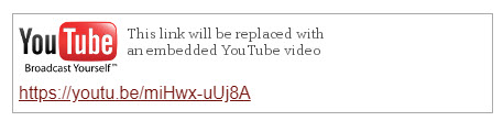 white rectangle with YouTube logo and link URL