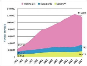 This graph displays the changing number of organ donors (green), transplants completed (blue), and patients on the waiting list (pink) from 1991 to 2017 in the US.