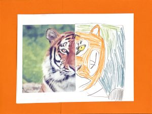 Tiger by Jacob C., grade 5
