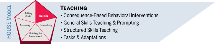 Teaching: behavioral interventions, general skills teaching and prompting, structured skills teaching, tasks and adaptations